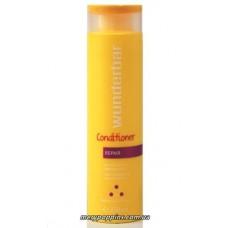 Кондиционер-восстанавливающий для очень сухих и поврежденных волос (WB Air-reducing Repair) - 250 мл