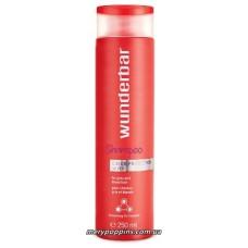 Шампунь цветозащитный для окрашенных, седых, светлых и обесцвеченных волос WB Color Protection Silver - 1000 мл.